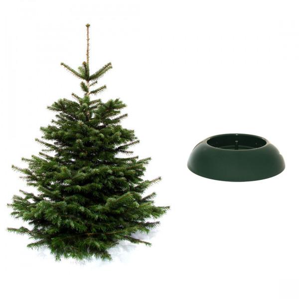 Weihnachtsbaum mit Ständer